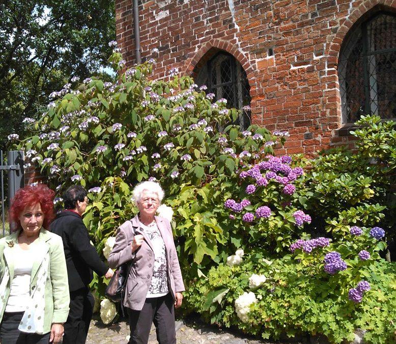 Neue Veranstaltungsreihe gut angenommen  Kloster Lüne – Besichtigung, Andacht und Ausklang im Remter am 18. Juli 2016